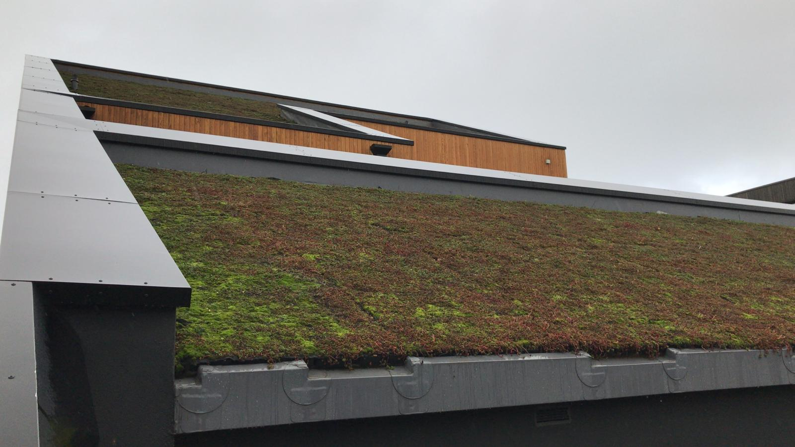 Project Gallery – SPS Flat Roof Systems